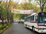 九頭竜紅葉祭り