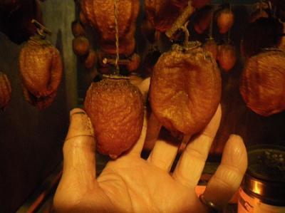 つるし柿作り体験(11月16日、17日)