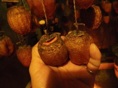 つるし柿作り体験(11月23日、24日)